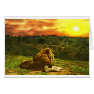 Lion's View Greeting Card