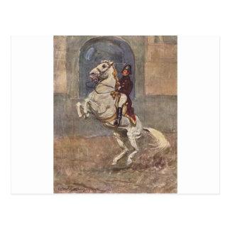 Lipizzaner Dressage: Courbette Postcard