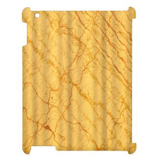 Liquid Gold #2 iPad Cover