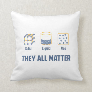 Liquid Solid Gas - They All Matter Cushion