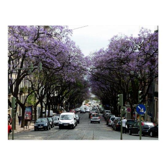 Lisbon Purple Flowers Postcard
