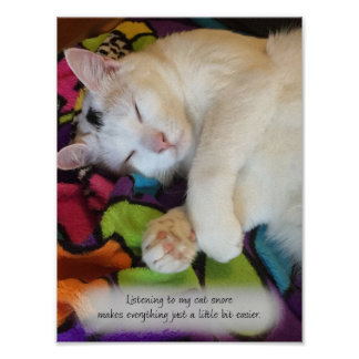Listening to My Cat Snore Poster