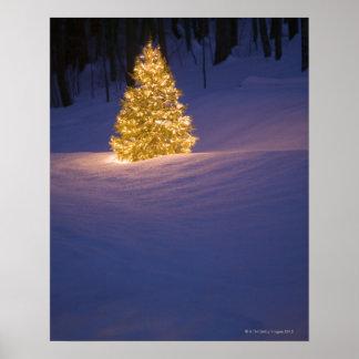 Lit Christmas tree outside Poster