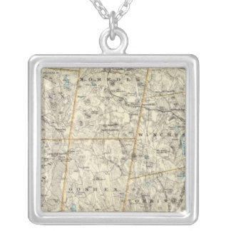 Litchfield Co N Silver Plated Necklace