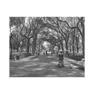 Literary Walk- Central Park, New York Canvas Print