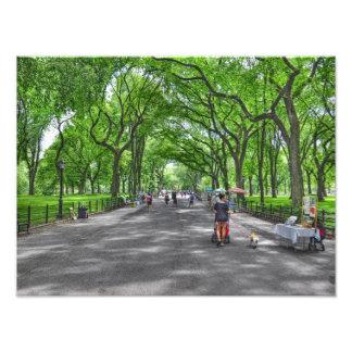 Literary Walk- Central Park, New York Art Photo