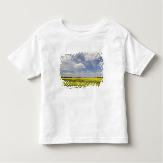 Lithuania, Central Lithuania, Joniskis, field of Toddler T-Shirt