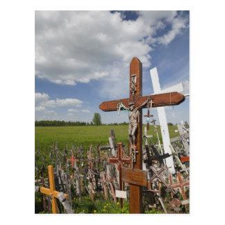 Lithuania, Central Lithuania, Siauliai, Hill Postcard