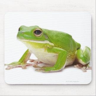 Litora Infrafrenata, Frog Mouse Mat