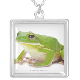 Litora Infrafrenata, Frog Silver Plated Necklace