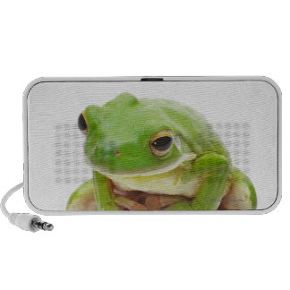 Litora Infrafrenata, Frog iPod Speakers