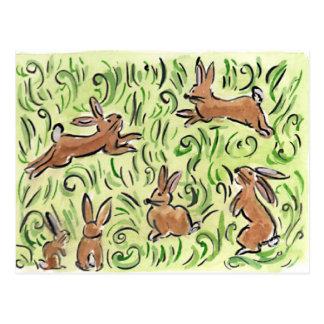 Litte Brown  Bunnies Post Card