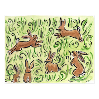 Litte Brown  Bunnies Postcard