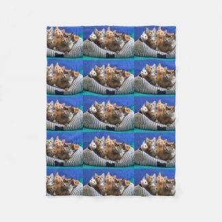 Litter of Cute Kittens Fleece Blanket