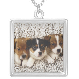 Litter of puppies silver plated necklace