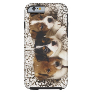 Litter of puppies tough iPhone 6 case