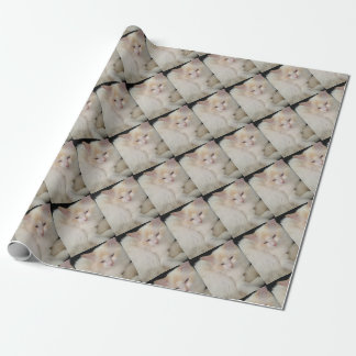 Little Ball of Fur Red Point Ragdoll Cat Wrapping Paper