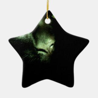Little Bear Ceramic Star Decoration