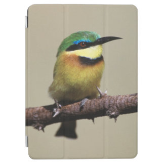 Little Bee-eater iPad Air Cover