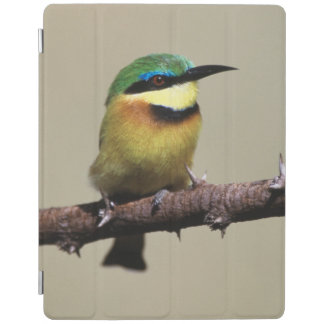 Little Bee-eater iPad Cover