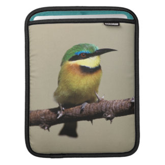 Little Bee-eater iPad Sleeve