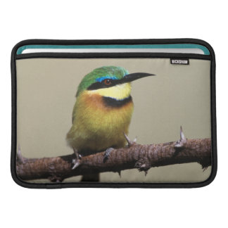 Little Bee-eater MacBook Sleeve