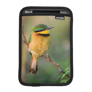 Little Bee-Eater Perching On A Branch, Maasai iPad Mini Sleeve