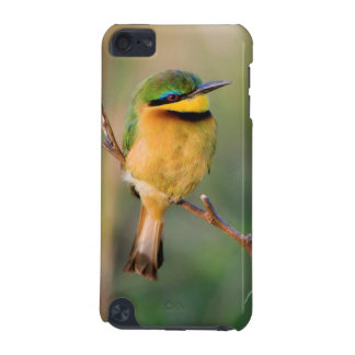 Little Bee-Eater Perching On A Branch, Maasai iPod Touch 5G Case