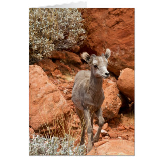 Little Big Horn Greeting Card