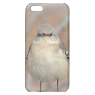 Little Birdie Case Cover For iPhone 5C