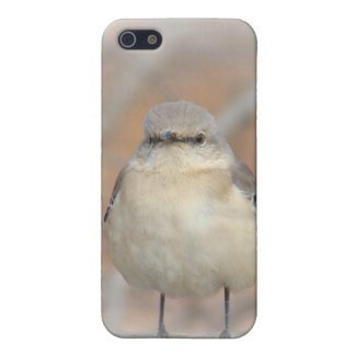 Little Birdie Case iPhone 5 Cover