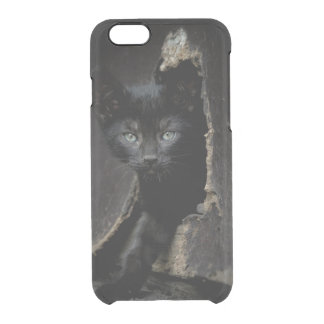 Little Black Kitty Clear iPhone 6/6S Case