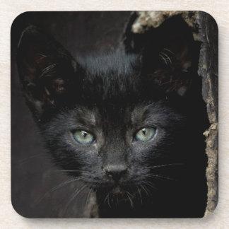 Little Black Kitty Coaster