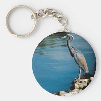 Little blue heron basic round button key ring