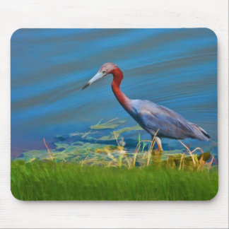 Little Blue Heron Wading Mousepad