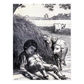 """""""Little Boy Blue"""" Vintage Illustration Postcard"""