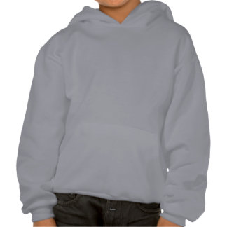 Little Boy With Airplane Hooded Pullover