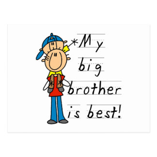Little Brother T-shirts and Gifts Postcard