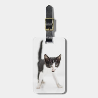 Little Cat Luggage Tag