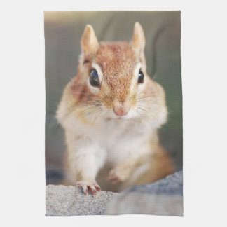 Little Chipmunk Portrait Kitchen Towels