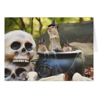 Little Chipmunk Witches Greeting Card