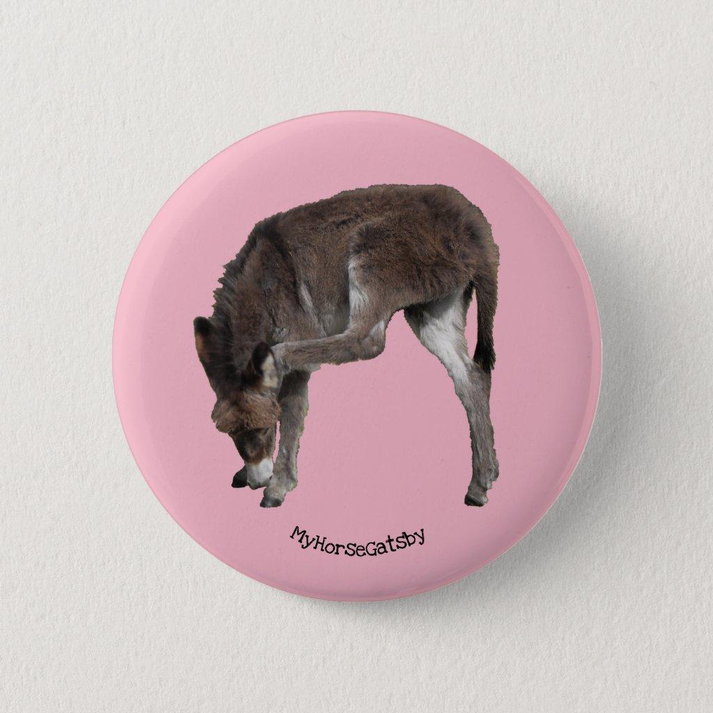 Little Chocolate Donkey Foal Scratching Ear