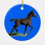 Little Colt Horse Baby's First Christmas Ornament