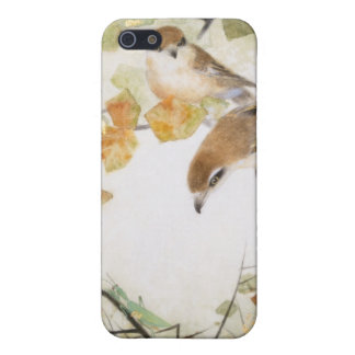 Little Creature-Bull-headed Shrikes iPhone Cases iPhone 5 Covers