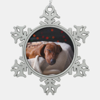 Little Cute Dachshund Puppy On Christmas Pewter Snowflake Decoration