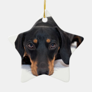 Little Dachshund Christmas Ornament