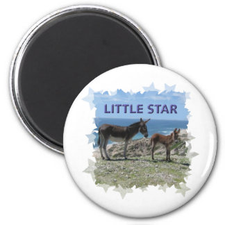 Little Donkey Star Magnet