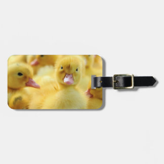 Little Ducks Luggage Tag