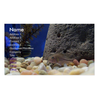 Little Fish Business Card