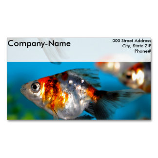 Little Fish Magnetic Business Cards
